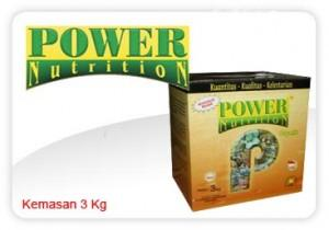 Power-power-nutrition-besar-300x210.jpg